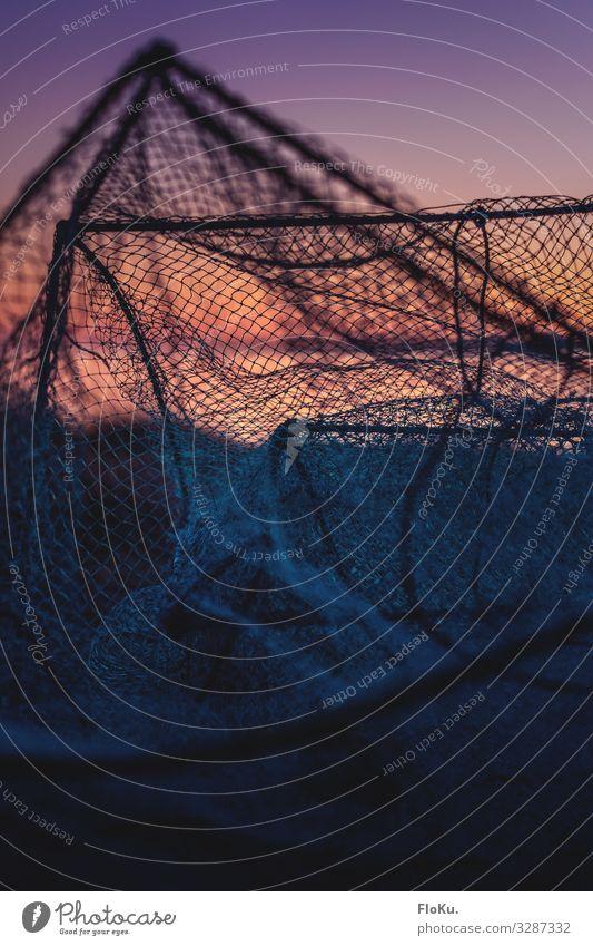 Altes Fischernetz am Strand Freizeit & Hobby Angeln Ferien & Urlaub & Reisen Netz alt Reuse Küste maritim Nostalgie Fischereiwirtschaft Farbfoto Außenaufnahme