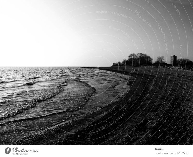 Büsum Ausflug Winter Landschaft Wolkenloser Himmel Küste Meer Hochhaus dunkel Baum Wellen Strand Badeort Nordsee Schwarzweißfoto Außenaufnahme Textfreiraum oben