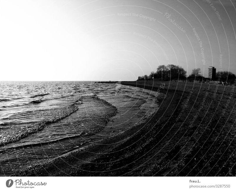 Büsum Landschaft Baum Meer Winter Strand dunkel Küste Ausflug Wellen Hochhaus Wolkenloser Himmel Badeort