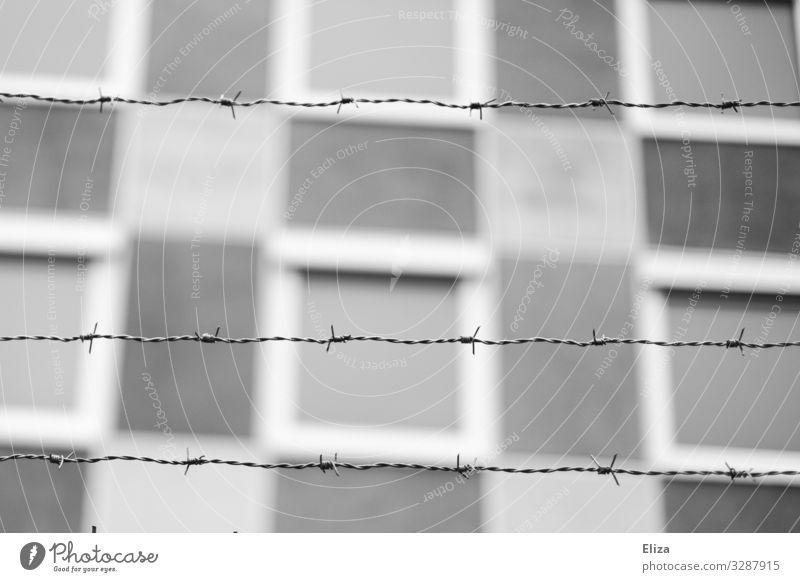 Verboten Stacheldrahtzaun bedrohlich Sicherheit Ausgrenzung Geborgenheit Grenze Justizvollzugsanstalt Schwarzweißfoto Außenaufnahme Menschenleer
