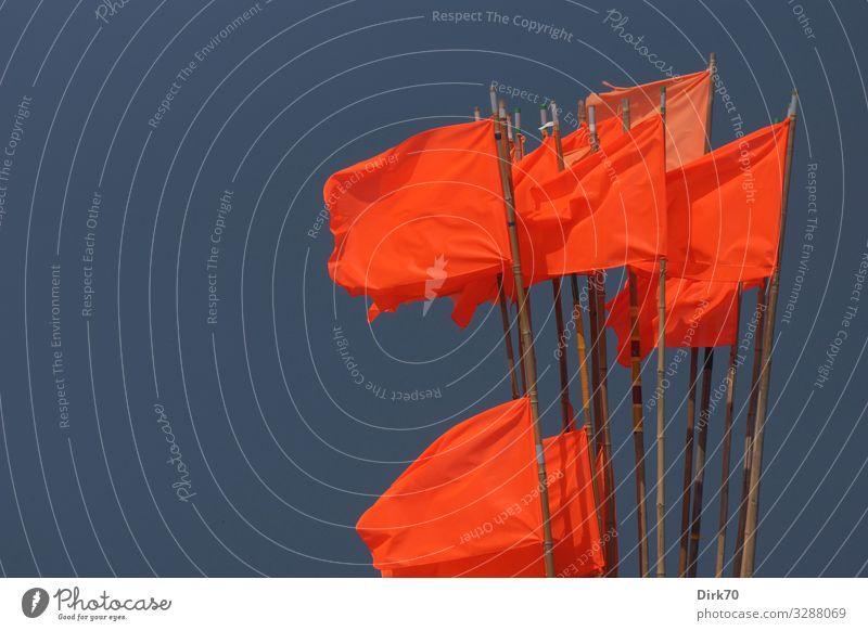 Netzfahnen im Wind Ferien & Urlaub & Reisen Sommerurlaub Meer Arbeit & Erwerbstätigkeit Beruf Fischereiwirtschaft Fischereihafen Umwelt Schönes Wetter Sturm