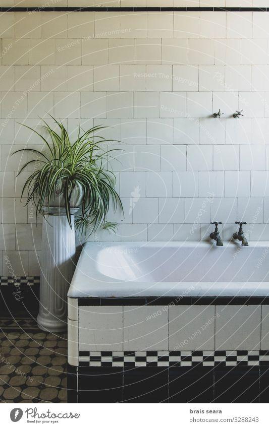 alt blau weiß Haus Erholung ruhig Architektur Lifestyle Innenarchitektur Gesundheitswesen Häusliches Leben Design Dekoration & Verzierung Metall retro Erde
