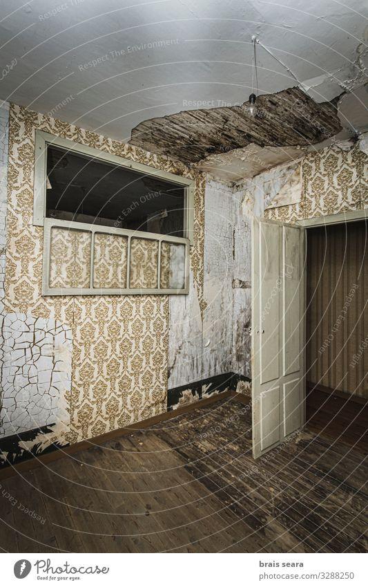 alt Haus Fenster dunkel Architektur Holz Wand Traurigkeit Gefühle Gebäude Mauer Raum Angst retro Tür dreckig