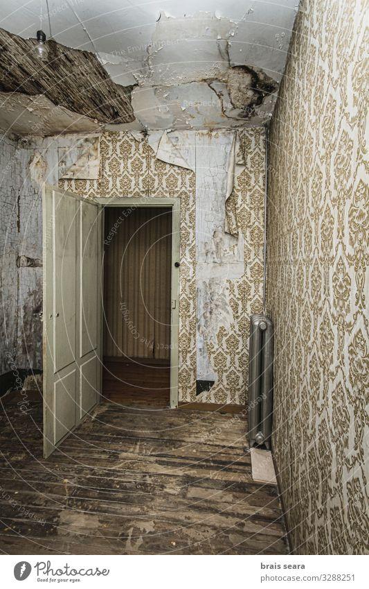 alt Haus dunkel Architektur Holz Innenarchitektur Wand Traurigkeit Gebäude Mauer Angst retro Tür dreckig trist gefährlich