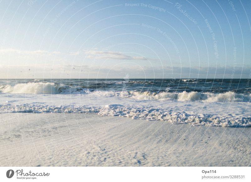 Meerweh Umwelt Natur Landschaft Luft Wasser Himmel Wolken Sonnenlicht Sommer Herbst Klima Klimawandel Wetter Schönes Wetter Wind Wellen Küste Seeufer Strand