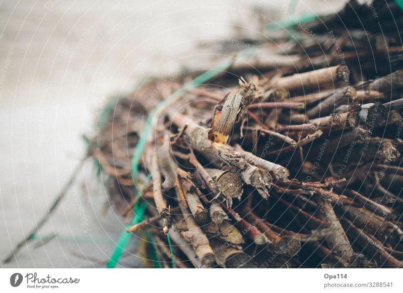 Gebunden Küste Strand Nordsee Insel Holz braun Vertrauen Sicherheit Schutz Geborgenheit Farbfoto Außenaufnahme Nahaufnahme Detailaufnahme Menschenleer
