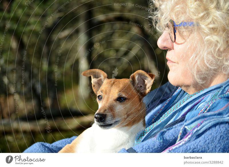 weitsichtig | Blick auf den See Frau Erwachsene 1 Mensch 60 und älter Senior Natur Landschaft Baum Sträucher Hochmoor Brille blond Locken Hund Tier genießen