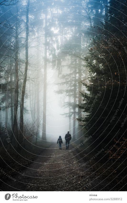 Spaziergang im nebligen Wald Kind Mensch Himmel Natur Mann Landschaft Baum Erholung ruhig Winter Straße Erwachsene Leben Umwelt Traurigkeit