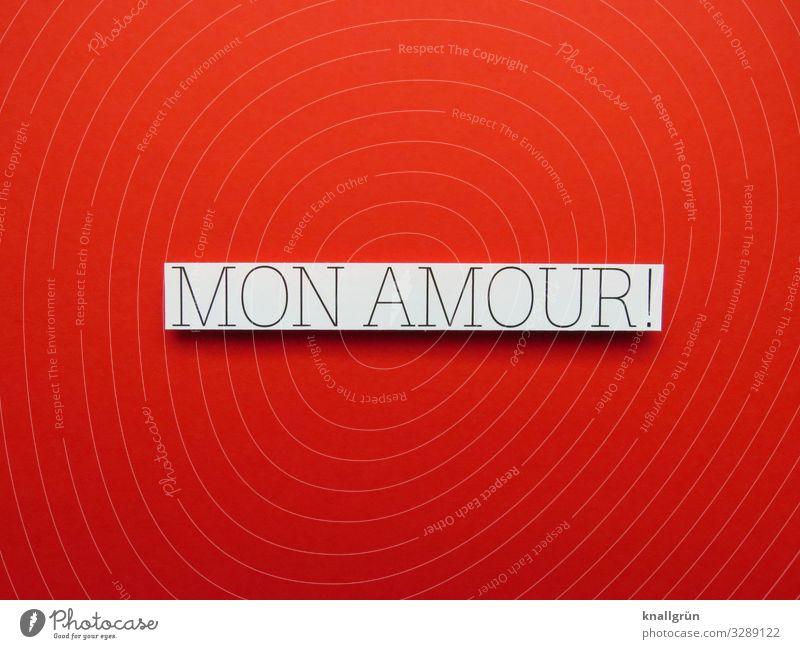 Mon Amour! Französisch Liebe Liebeserklärung Herz Romantik Verliebtheit Gefühle Liebesbekundung Liebesgruß Valentinstag Stimmung Glück innig Vertrauen
