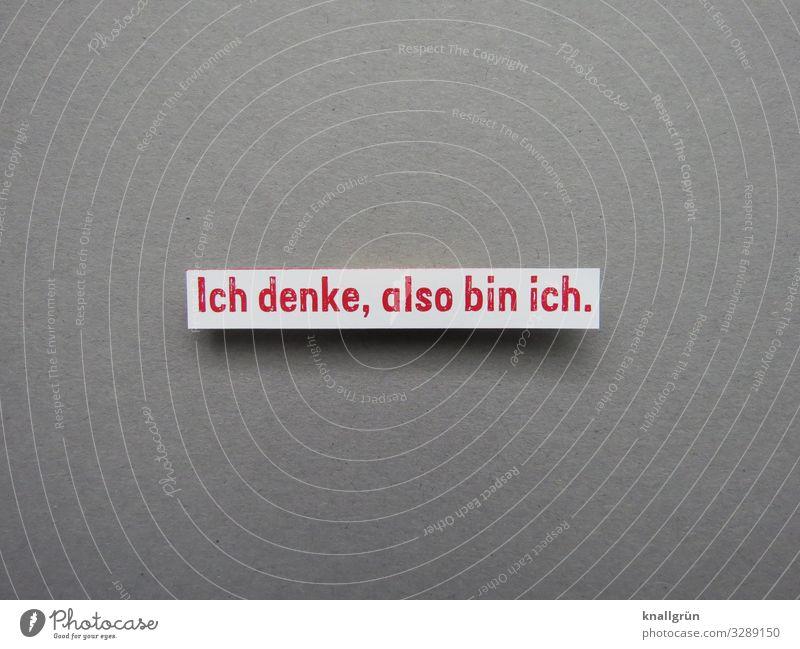 Ich denke, also bin ich. Denken Reflektion Mensch nachdenken selbst Bewusstsein Schlussfolgerung Erkenntnis Logik Erwartung Gedanke klug Buchstaben Wort Satz