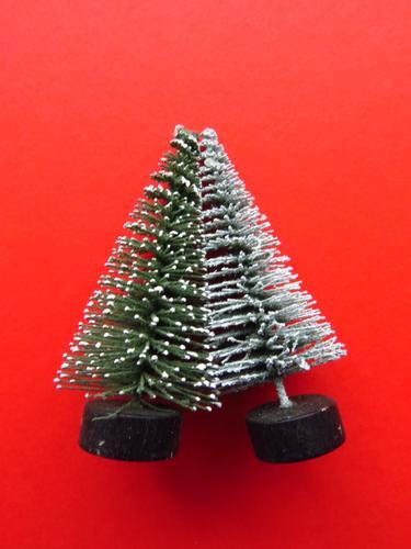 Unzertrennlich Pflanze Baum Weihnachtsbaum Dekoration & Verzierung Deko-Bäumchen berühren Zusammensein grün rot weiß Gefühle Kontakt Zusammenhalt anlehnen