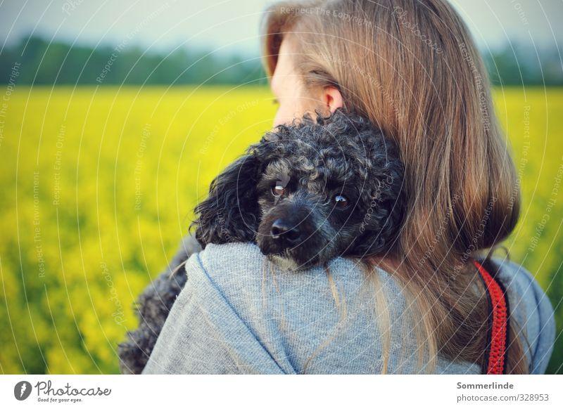 Geborgenheit Hund Mensch Jugendliche Pflanze Erholung Blume Freude Tier 18-30 Jahre Erwachsene Leben Gefühle feminin Glück Freiheit träumen