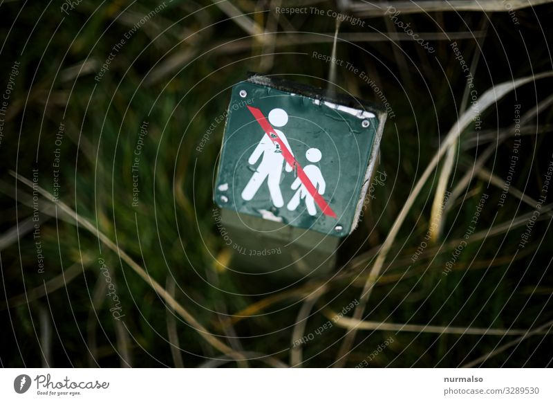 Mensch in Natur Verboten Lifestyle Sport Fitness Sport-Training Bildung Wissenschaften androgyn 2 Frühling Sommer Herbst Garten Park Feld Wald Urwald gehen Jagd