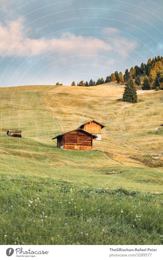 Morgenstimmung - Seiser Alm Natur Landschaft blau grün rosa Alpen alpenhütte Hüttenferien Morgendämmerung Wolken Wald Wiese Weide Italien Südtirol Gras Berghang