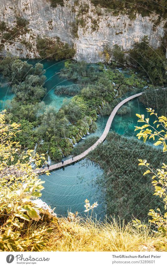 Plitvicer Seen Natur blau grün türkis Baum Steg plitvicer seen Wasser Nationalpark Felsen Sträucher Kroatien Ferien & Urlaub & Reisen Reisefotografie Farbfoto