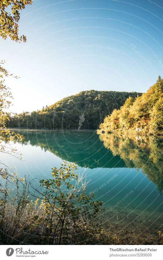Plitvicer Seen Umwelt Natur blau türkis plitvicer seen Baum Nationalpark wandern Himmel Kroatien Reflexion & Spiegelung Sonnenaufgang Ferien & Urlaub & Reisen
