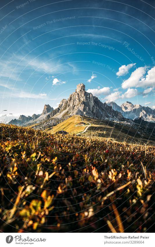Sonnenuntergang am Passo di Giau Berge u. Gebirge Wolken Landschaft Licht Abend Natur blau Gras Himmel Wiese Außenaufnahme Straße