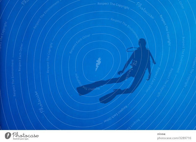 Silhouette eines Tauchers mit Flossen ruhig Freizeit & Hobby Ausflug Abenteuer Ferne Freiheit Sommer Meer Sport Schwimmen & Baden tauchen Messinstrument Mensch