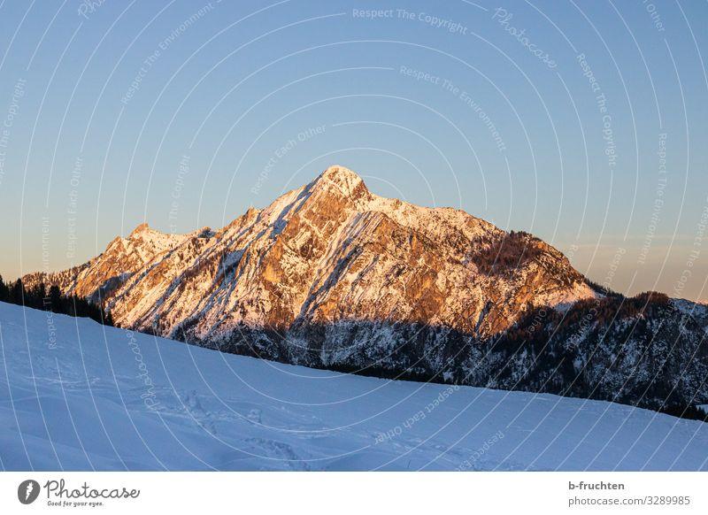 Berg im Abendlicht harmonisch Zufriedenheit Freizeit & Hobby Ferien & Urlaub & Reisen Tourismus Ausflug Freiheit wandern Sonne Winter Felsen Alpen