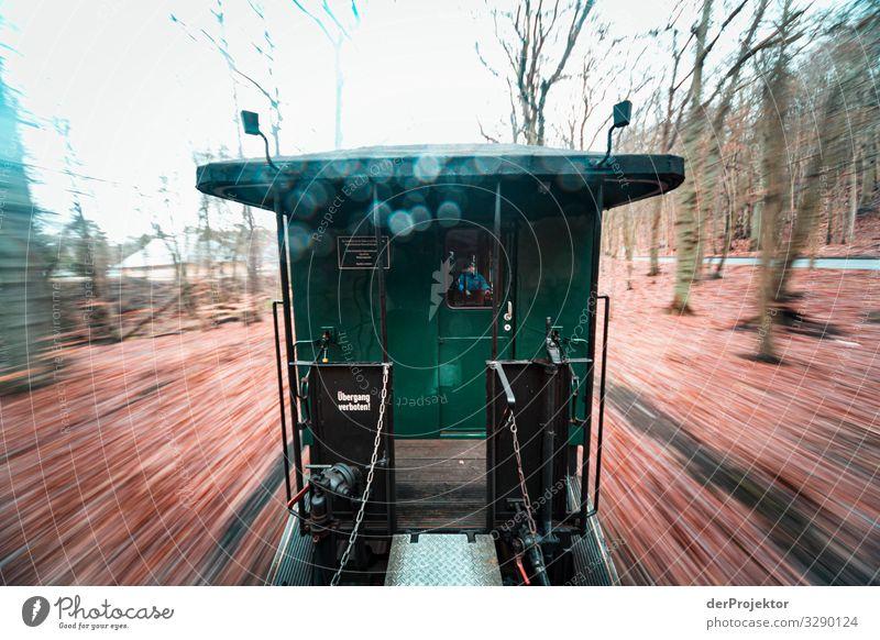 Rasender Roland auf Rügen im Winter Ferien & Urlaub & Reisen grün Reisefotografie Ferne Tourismus Freiheit Ausflug Verkehr Kraft Abenteuer einzigartig Eisenbahn