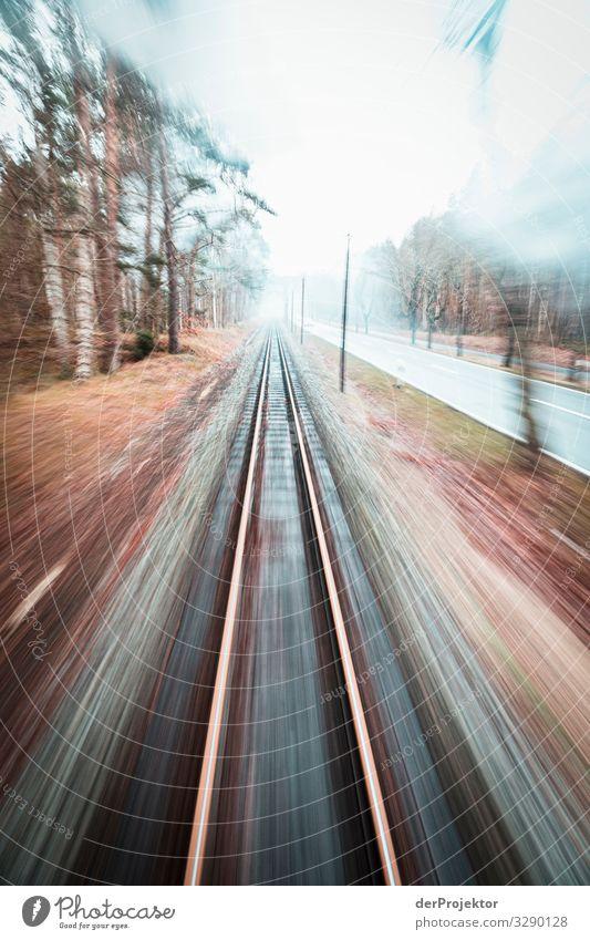 Mit dem rasenden Roland auf Rügen unterwegs Ferien & Urlaub & Reisen Tourismus Ausflug Abenteuer Ferne Freiheit Verkehr Verkehrsmittel Verkehrswege