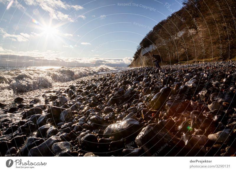 Steinstrand bei Sassnitz auf Rügen Ferien & Urlaub & Reisen Tourismus Ausflug Abenteuer Ferne Freiheit wandern Umwelt Natur Landschaft Pflanze Tier Winter