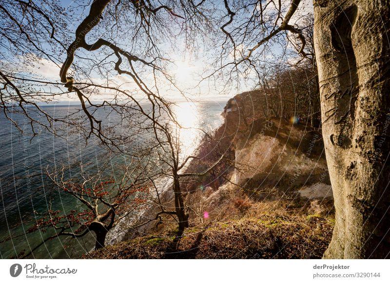 Caspar David Friedrich 4.0 bei Sassnitz Ferien & Urlaub & Reisen Natur Pflanze Landschaft Baum Meer Winter Ferne Strand Umwelt Küste Tourismus außergewöhnlich