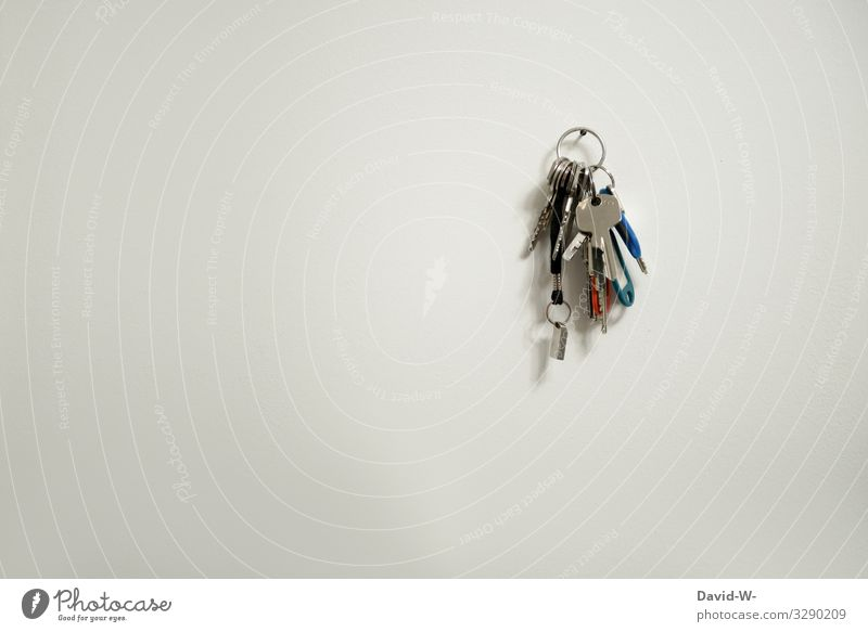 Schlüssel Lifestyle kaufen Reichtum elegant Stil Design Häusliches Leben Wohnung Haus Hausbau Arbeit & Erwerbstätigkeit Arbeitsplatz Büro Business Mensch Kunst