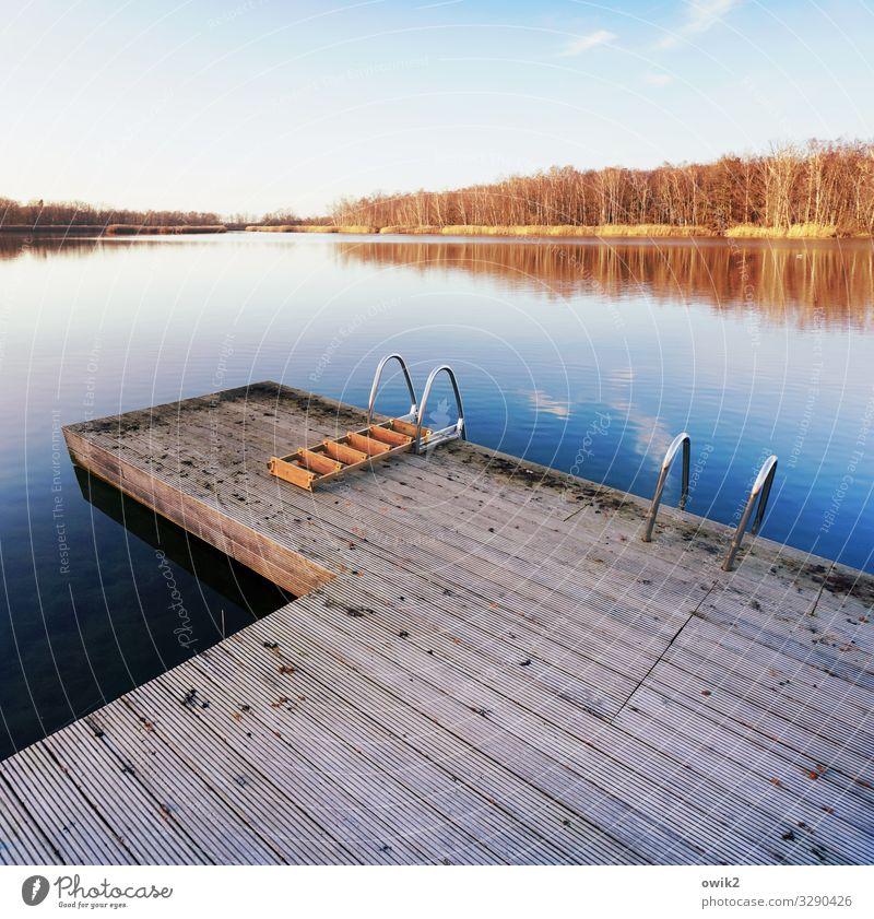Winterbad Freizeit & Hobby Umwelt Natur Landschaft Pflanze Wasser Himmel Horizont Schönes Wetter Wald Seeufer Insel Wolken Steg Einstieg (Leiter ins Wasser)