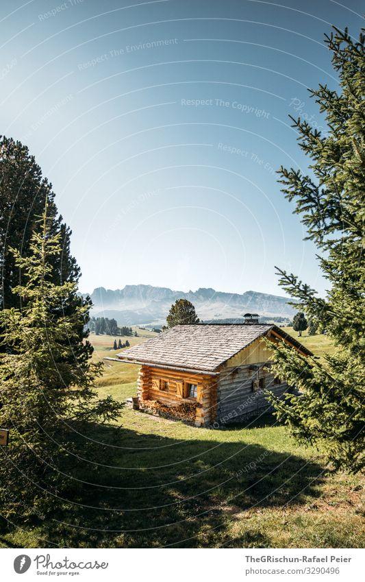 Alpe di Suisi - Seiser-Alm Natur Landschaft blau braun grau grün schwarz Hütte Seiser Alm Baum Berge u. Gebirge ruhig privat Einsamkeit Schatten Licht Holz