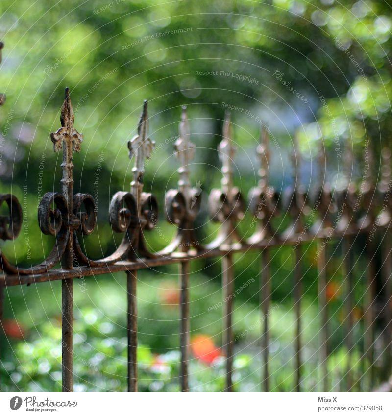 Zacken in der Krone Wohnung Garten alt Spitze Zaun Schmiedeeisen Metallzaun Dekoration & Verzierung Farbfoto mehrfarbig Außenaufnahme Nahaufnahme Detailaufnahme