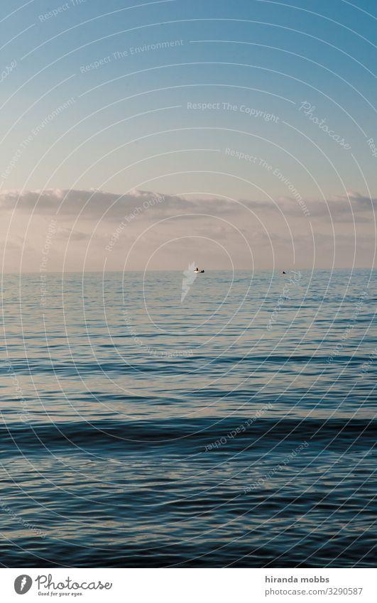 Meerblick Umwelt Natur Landschaft Wasser Himmel Wolken Horizont Sommer Schönes Wetter Menschenleer Schifffahrt Bootsfahrt Fischerboot Segel Zufriedenheit ruhig