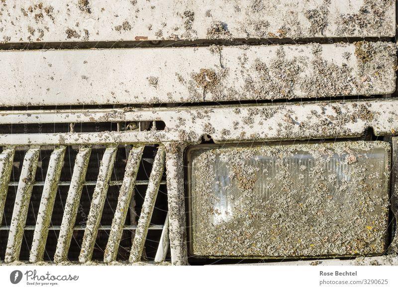 Das alte Wohnmobil Umwelt Pflanze Moos Flechten Verkehr Verkehrsmittel Kühlergrill Autoscheinwerfer Metall Ferien & Urlaub & Reisen Wachstum trashig trist grau