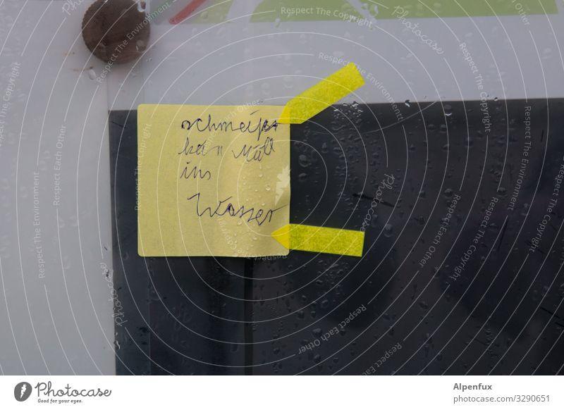 kein Müll | geschriebenes Klima Klimawandel Zeichen Schriftzeichen Hinweisschild Warnschild schreiben klug Wahrheit Ehrlichkeit Weisheit Wut Angst Ärger