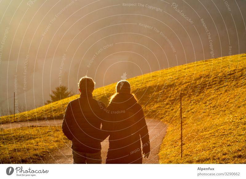 Gemeinsam in die Sonne Frau Mensch Mann grün Freude Erwachsene sprechen Liebe feminin Gefühle Glück Paar Zusammensein Freundschaft Stimmung gehen