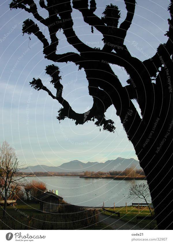 black tree Baum See Silhouette Herbst Meer Wasser Berge u. Gebirge