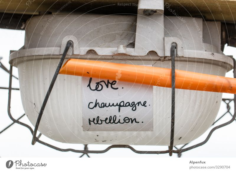 love.champagne.rebellion. | geschriebenes Graffiti Liebe Lampe leuchten Schriftzeichen Energiewirtschaft Zeichen Kabel Zettel rebellisch Champagner rebellieren