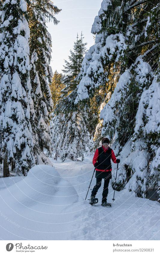 Schneeschuhwanderung Freude sportlich Fitness Leben Freizeit & Hobby Abenteuer Freiheit Sport Wintersport wandern Frau Erwachsene 1 Mensch 30-45 Jahre Umwelt