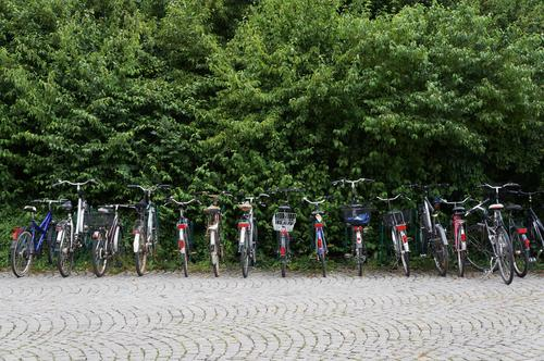 abgasfrei Gesundheit Fitness Fahrradfahren Umwelt Natur Park Verkehr Personenverkehr Straßenverkehr grau grün rot schwarz silber Umweltschutz Fahrräder viele
