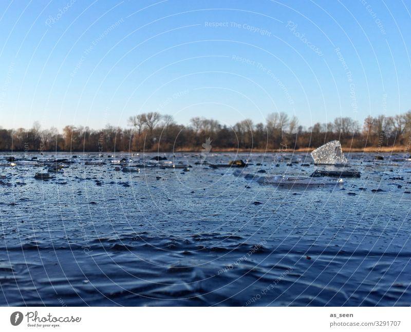 Kalter Tag am See Ausflug Winter Winterurlaub Umwelt Natur Urelemente Luft Wasser Klima Schönes Wetter Eis Frost Baum Seeufer Teich Kreuzteich Riddagshausen
