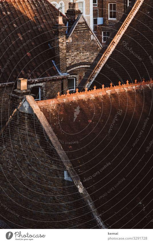 Dach und Fassaden Haus First Dachfirst Licht Schatten Ort Stadt historisch alt Ziegelstein Backsteinfassade braun rot Dreieck Fenster Schornstein Tag Gebäude