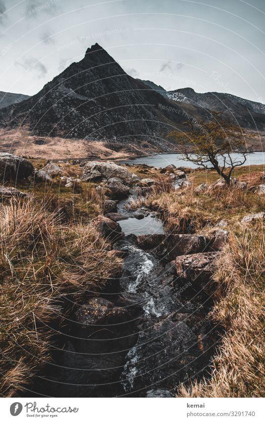 Der Berg Tryfan Wales Großbritannien Snowdonia Fels Bach Wasser Stein Landschaft rau Natur Felsen Tag Himmel Urelemente fließen düster dunkel