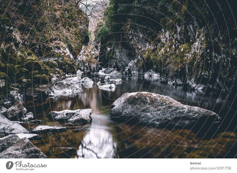 Canyon mit Wasser Schlucht fließen dunkel grau Stein Moos grün Fluss Natur Umwelt Bach Licht Langzeitbelichtung Felsen Bewegungsunschärfe Flussufer nass