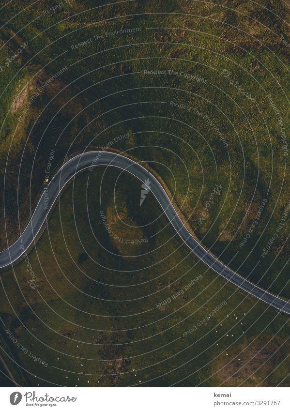 Straße von oben Sonnenlicht grau Umwelt Linie Tag Wege & Pfade Asphalt England Idylle Ruhe Kurve Drohnenaufnahme vogelperspektive grün Straßenverkehr Verkehr