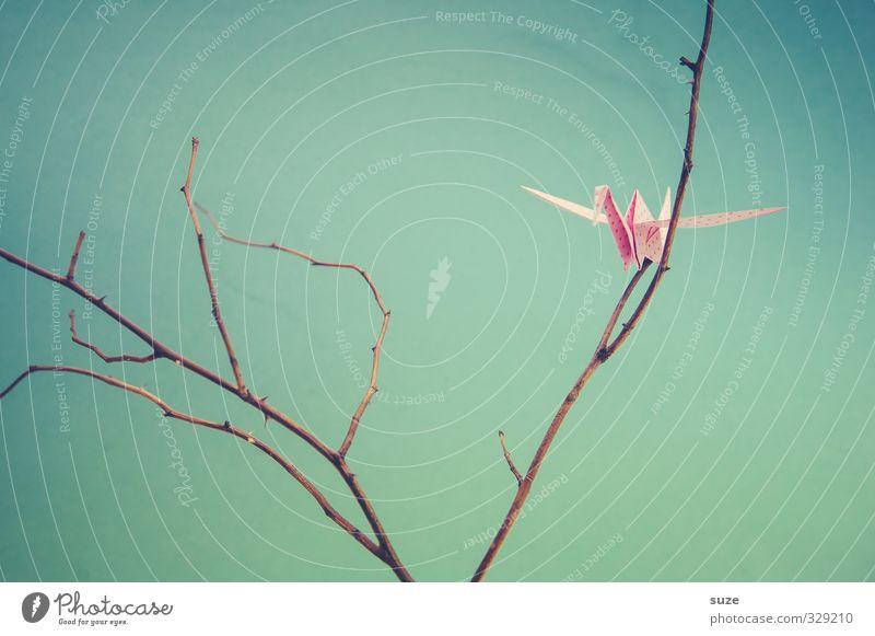 Jedes Papierchen ein Tierchen blau klein Stil Kunst Vogel rosa fliegen Freizeit & Hobby Lifestyle Design Dekoration & Verzierung ästhetisch niedlich Papier Kreativität Ast