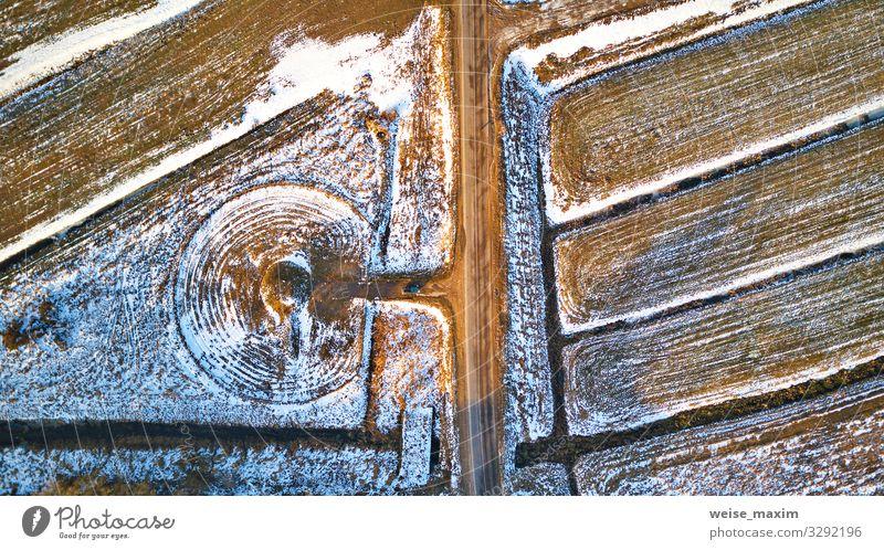 Winterliche, ländliche Draufsicht. Gepflügte Felder mit Winterfrüchten Ferien & Urlaub & Reisen Ferne Freiheit Schnee Natur Landschaft Erde Eis Frost Baum