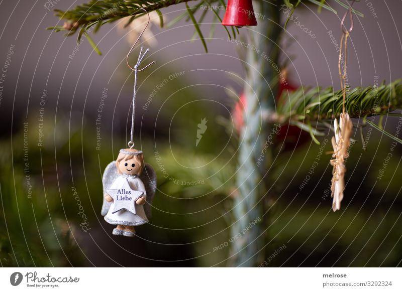 Weihnachtsdeko Engerl Weihnachten & Advent Pflanze grün weiß rot Baum Religion & Glaube Liebe Feste & Feiern Stil Dekoration & Verzierung elegant einzigartig
