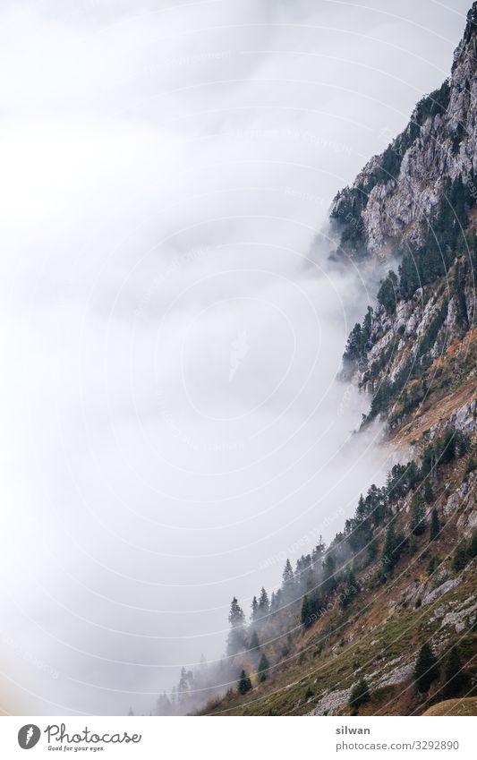 Nebel an der Felswand Ausflug Abenteuer Berge u. Gebirge wandern Natur Landschaft Herbst Felsen Alpen berühren alt ästhetisch gigantisch kalt schön Spitze