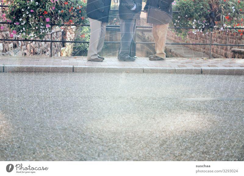 3 in einer reihe Straße Bürgersteig Geländer Brückengeländer Dorf Stadt Wissembourg Frankreich Außenaufnahme Blumenkasten Bordsteinkante Mann Männlicher Senior