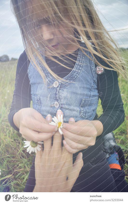 ring aus gänseblümchen .. Kind Mädchen Kindheit Haare & Frisuren Wind Außenaufnahme Blume Blumenwiese Gänseblümchen Margerite Kamille Wiesenblume Hand Finger